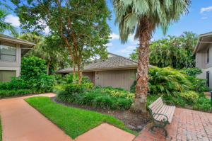 7080  Rain Forest Drive  For Sale 10646543, FL