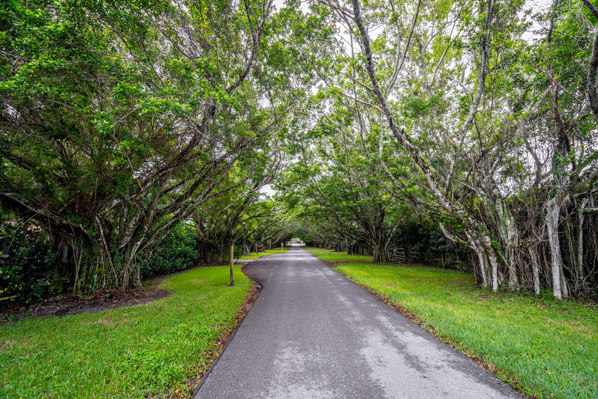 8540 Surrey Lane Boca Raton, FL 33496 photo 27