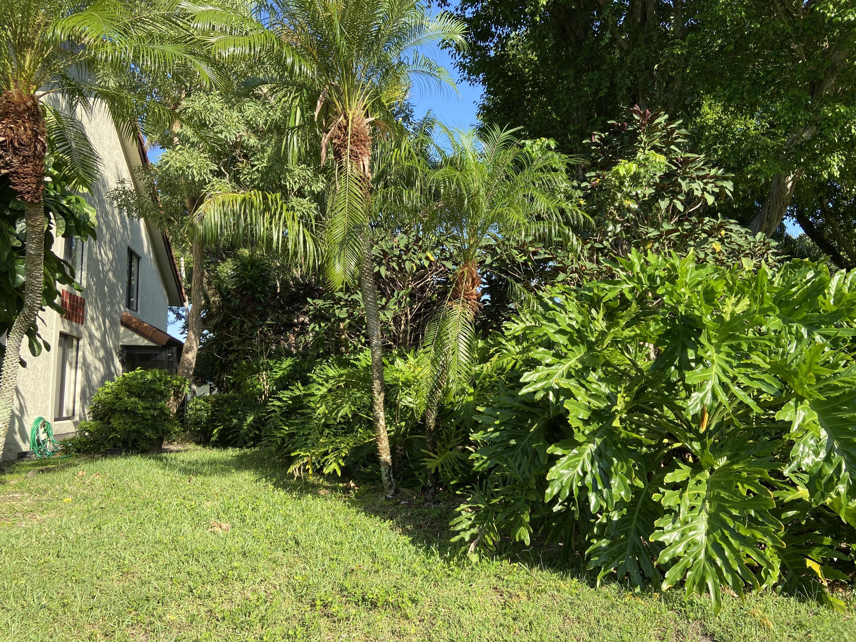 10576 Tropic Palm Avenue 201 Boynton Beach, FL 33437 photo 41