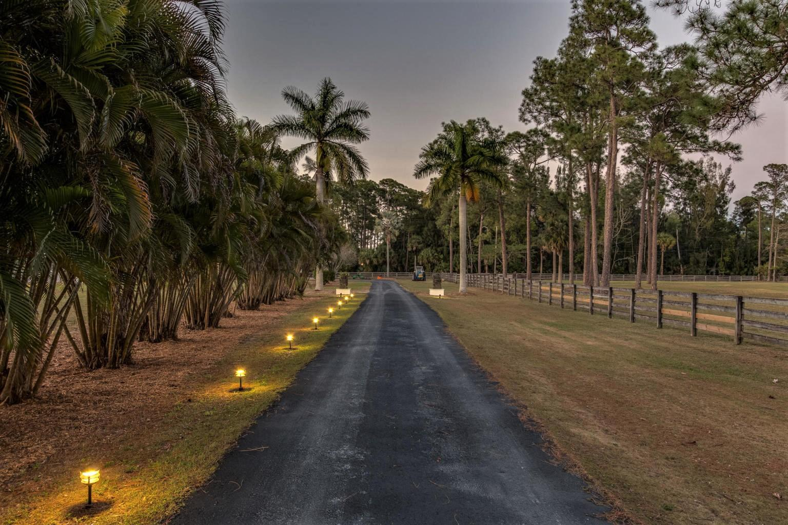 Driveway Twilight
