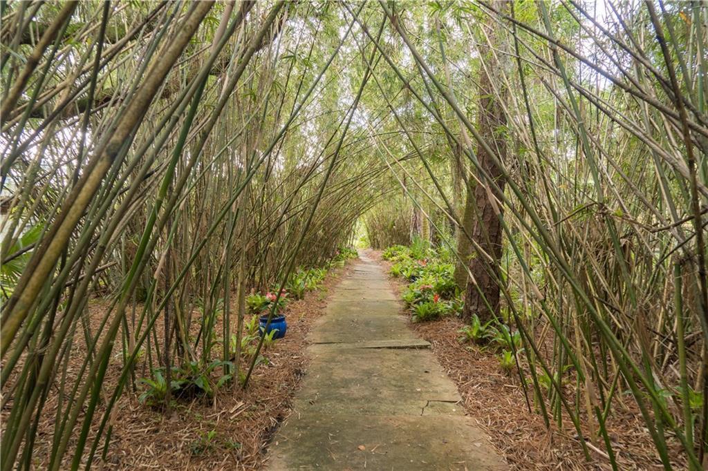Immokolee_Bamboo Trail