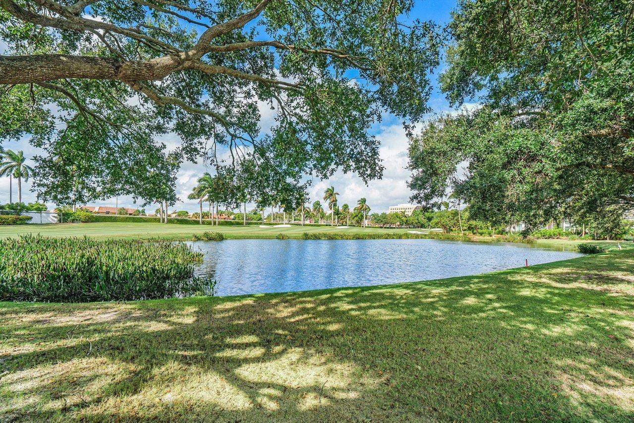1329 Thatch Palm Drive Boca Raton, FL 33432 photo 69