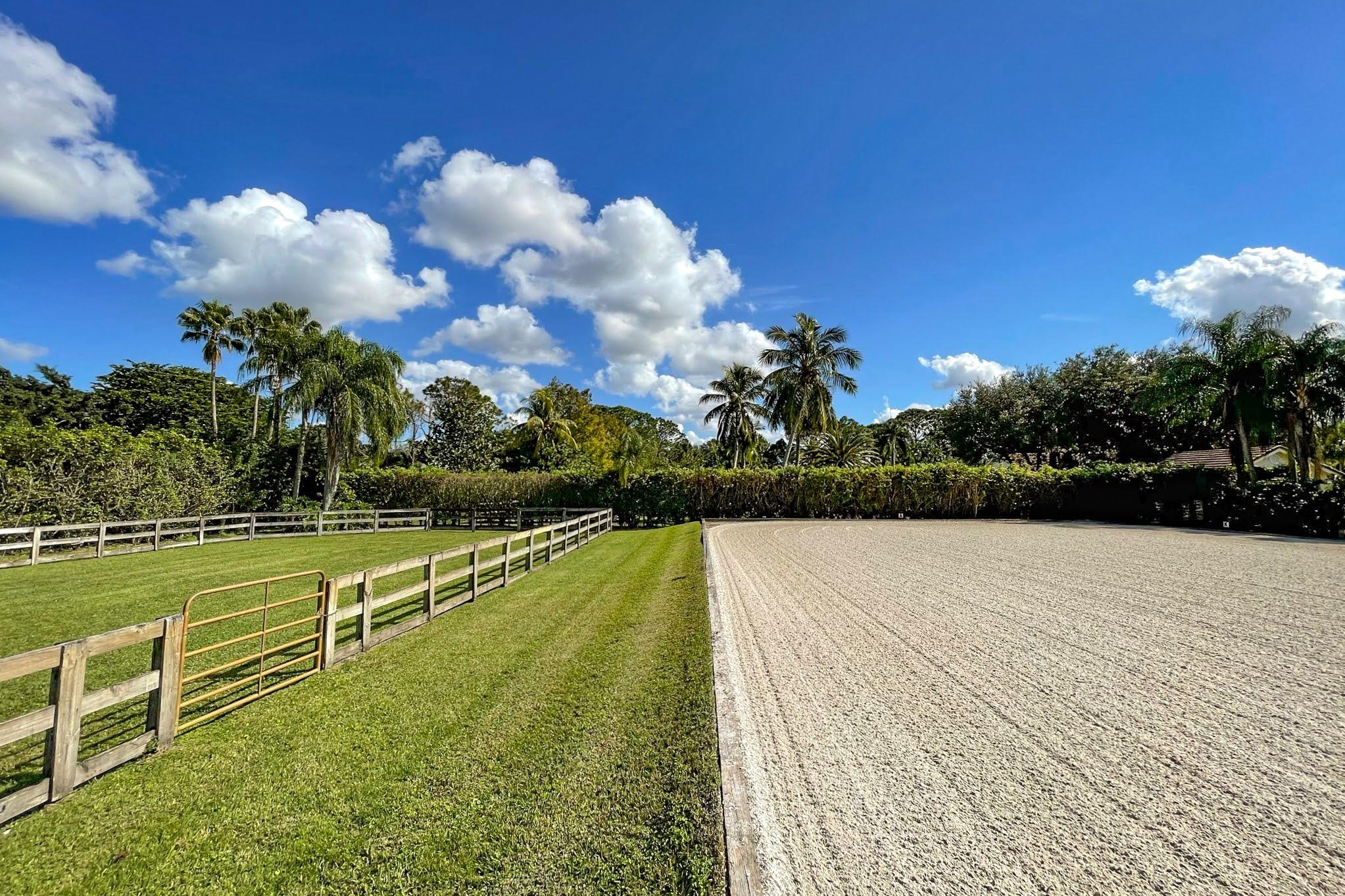 Drafthorse Lane-22