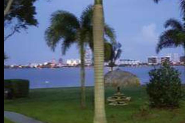 708 Executive Center Drive 12 West Palm Beach, FL 33401 photo 3