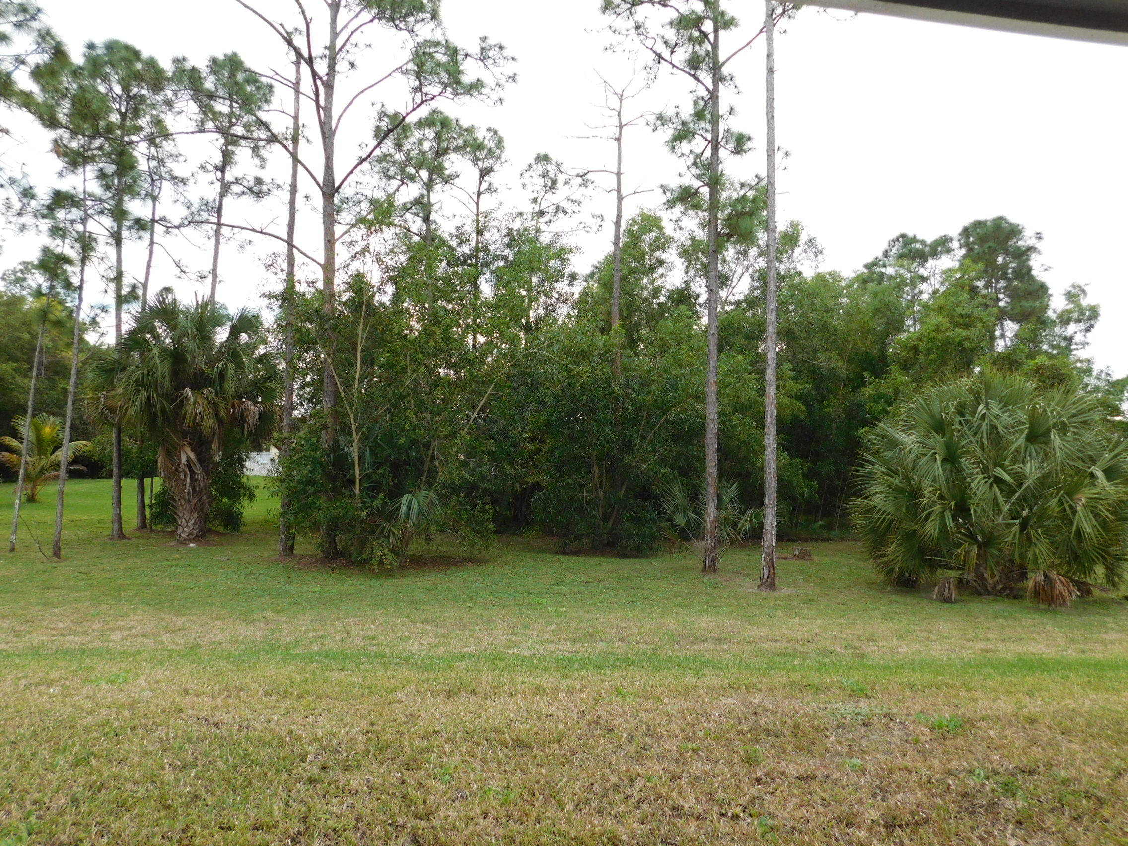 17436 91st Place The Acreage, FL 33470 small photo 2
