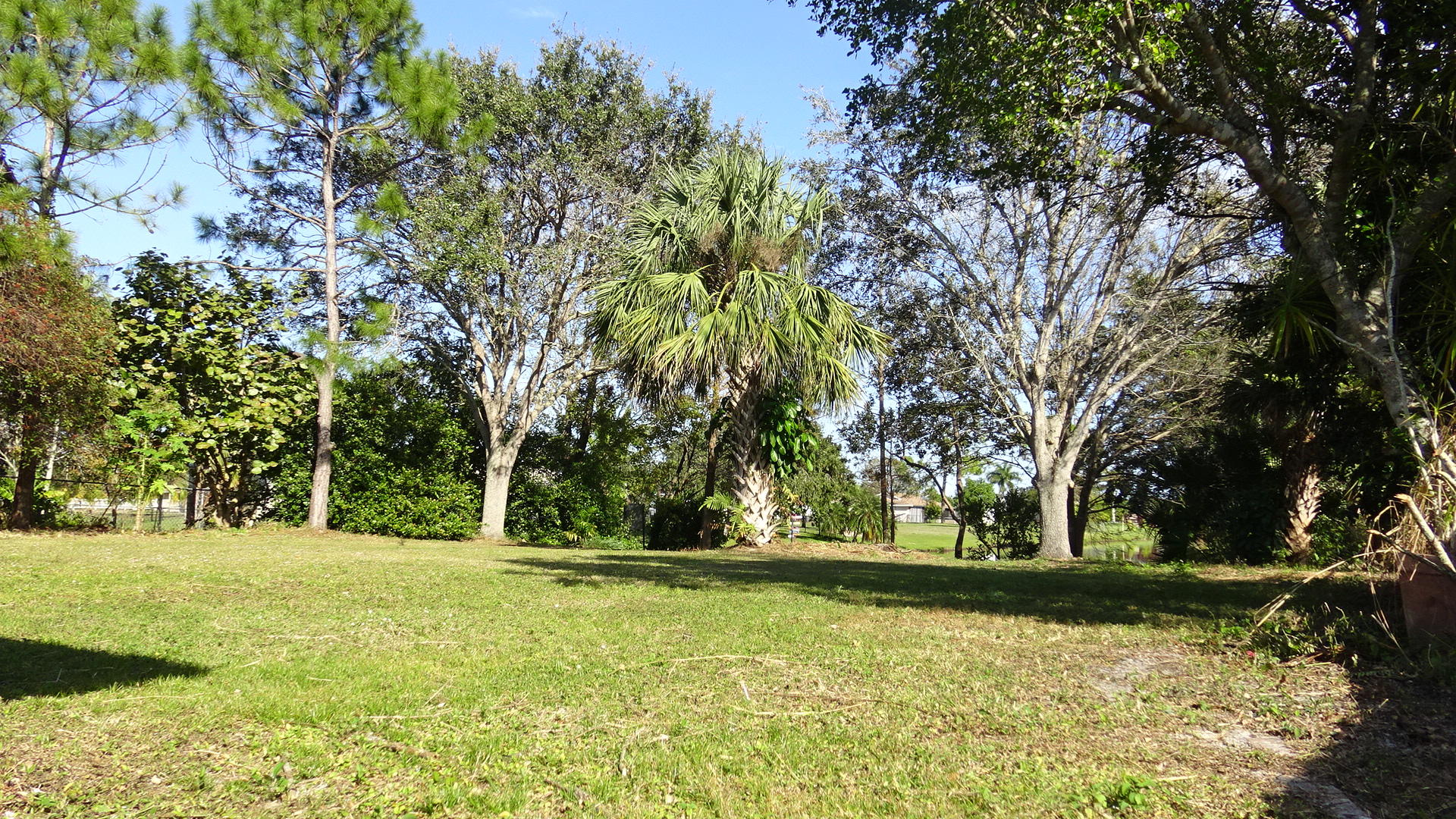 143 Santiago Street Royal Palm Beach, FL 33411 photo 6