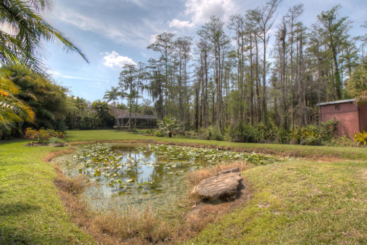 large pond off studio/play house