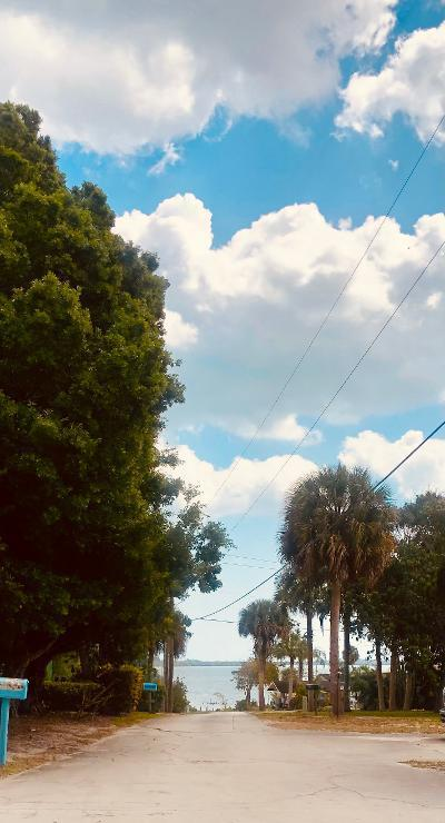 View  the driveway - the St. Lucie River