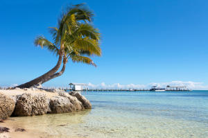 Property for sale at 81801 Overseas Highway Unit: 633, ISLAMORADA,  FL 33036