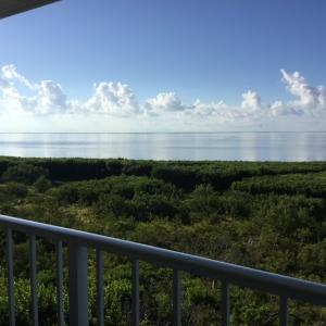Property for sale at 500 Burton Drive Unit: 3413, KEY LARGO,  FL 33070