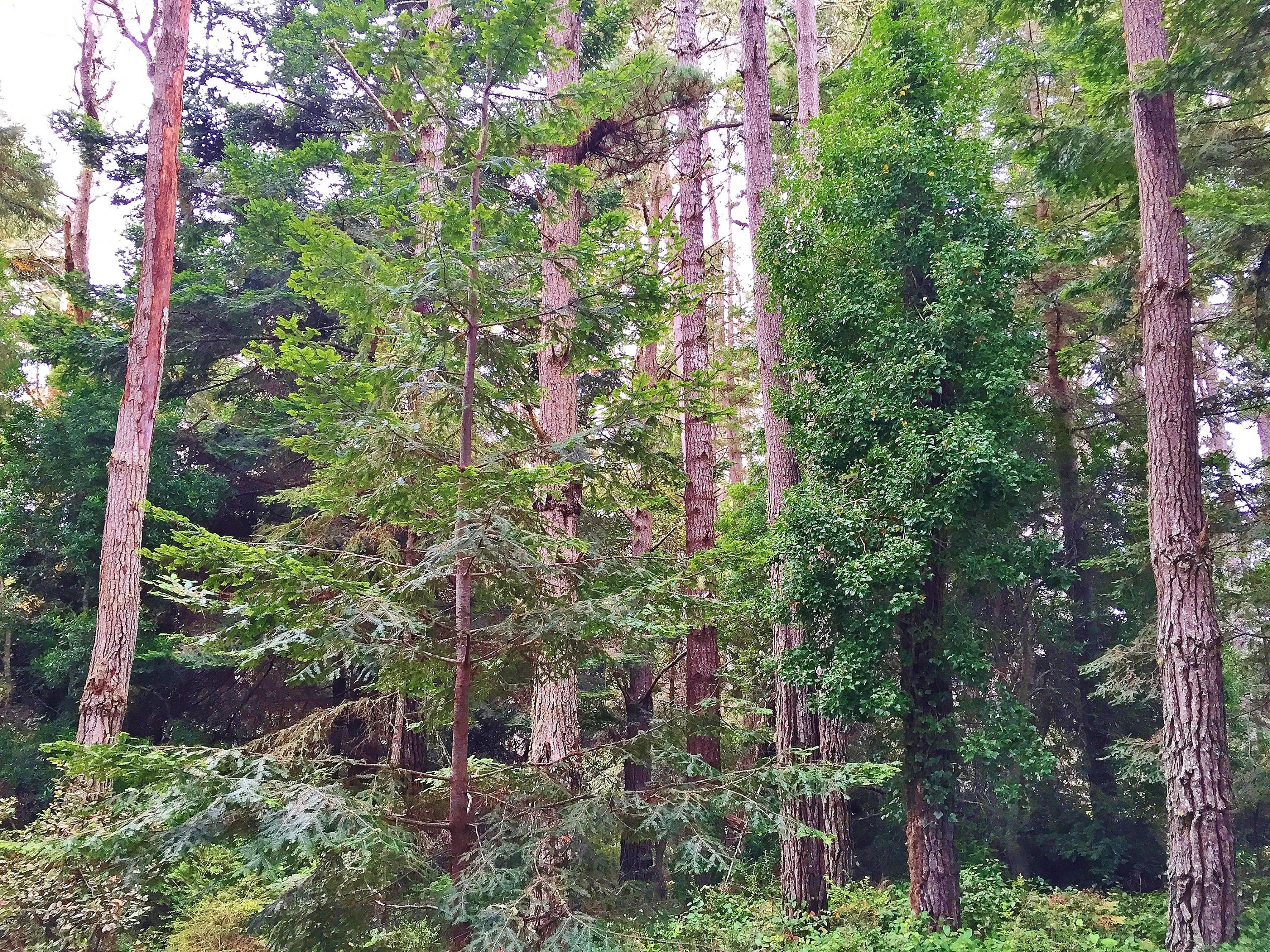 Build your custom home on this pretty parcel on the golf course in Little River. There are some very nice trees and a little fern lined creek. Situated down a private lane. Excellent location close to shopping, restaurants and beautiful beaches. Minutes from Mendocino Village.