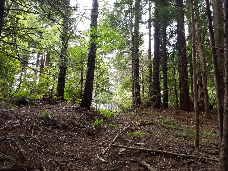 Superficie en Acres por un Venta en 17500 Redwood Springs Drive 17500 Redwood Springs Drive Fort Bragg, California 95437 Estados Unidos