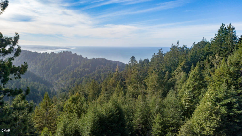 Residential Income for Sale at 31800 Bruhel Point Road 31800 Bruhel Point Road Fort Bragg, California 95437 United States