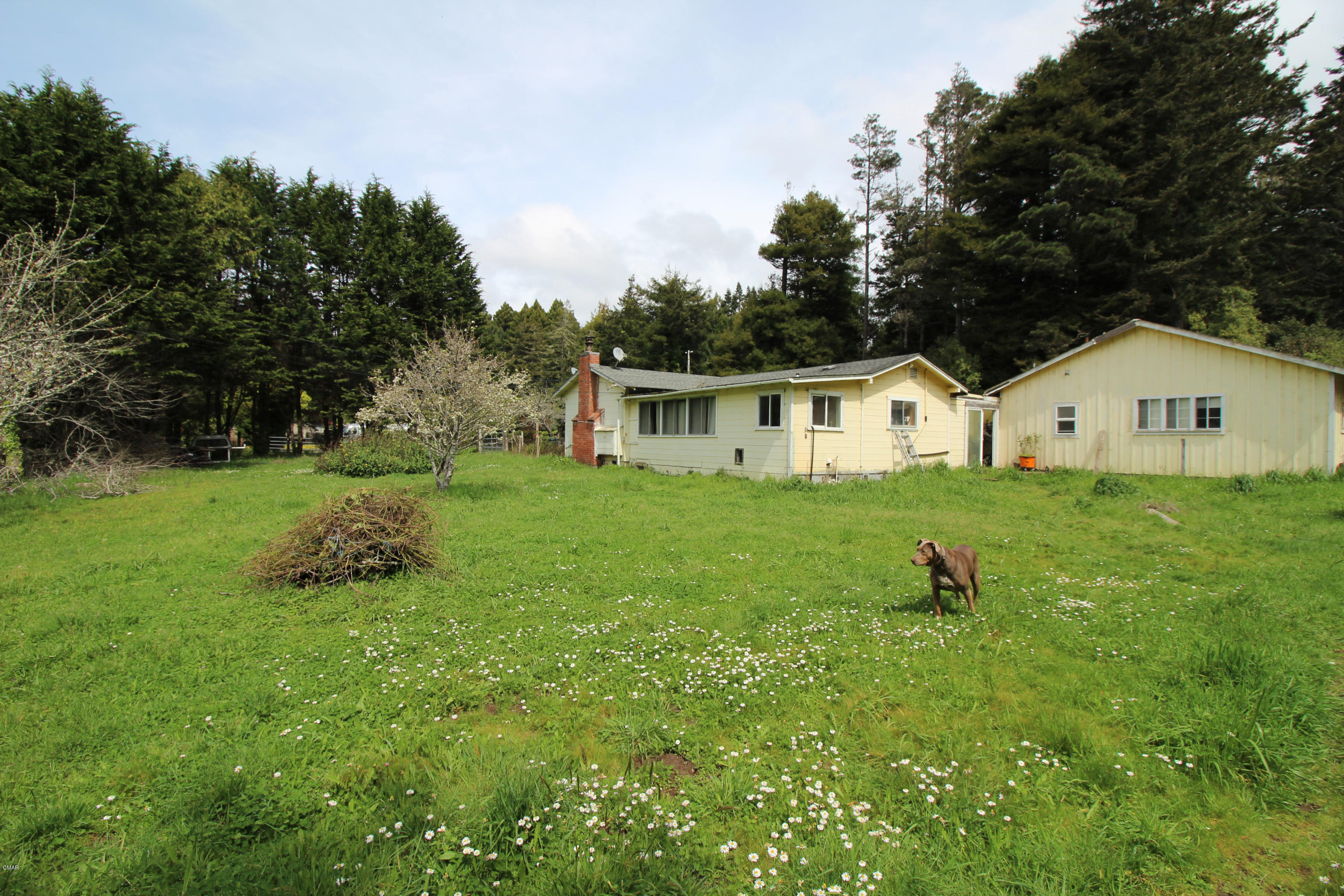 Single Family Home for Sale at 32261 Ellison Way 32261 Ellison Way Fort Bragg, California 95437 United States