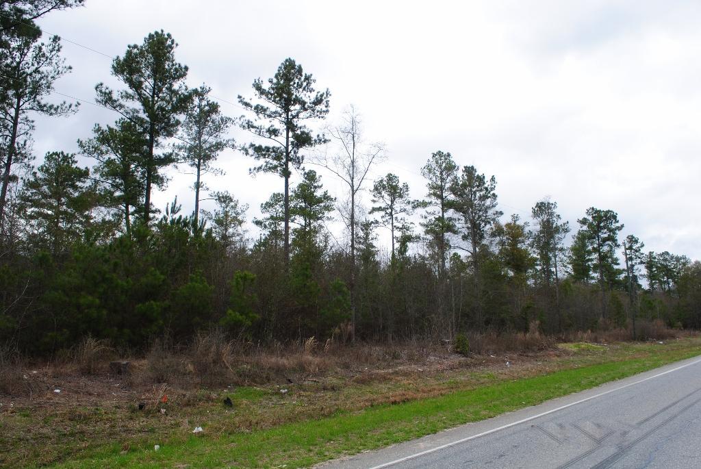 Photo of home for sale at 0 Hwy 49, Oglethorpe GA