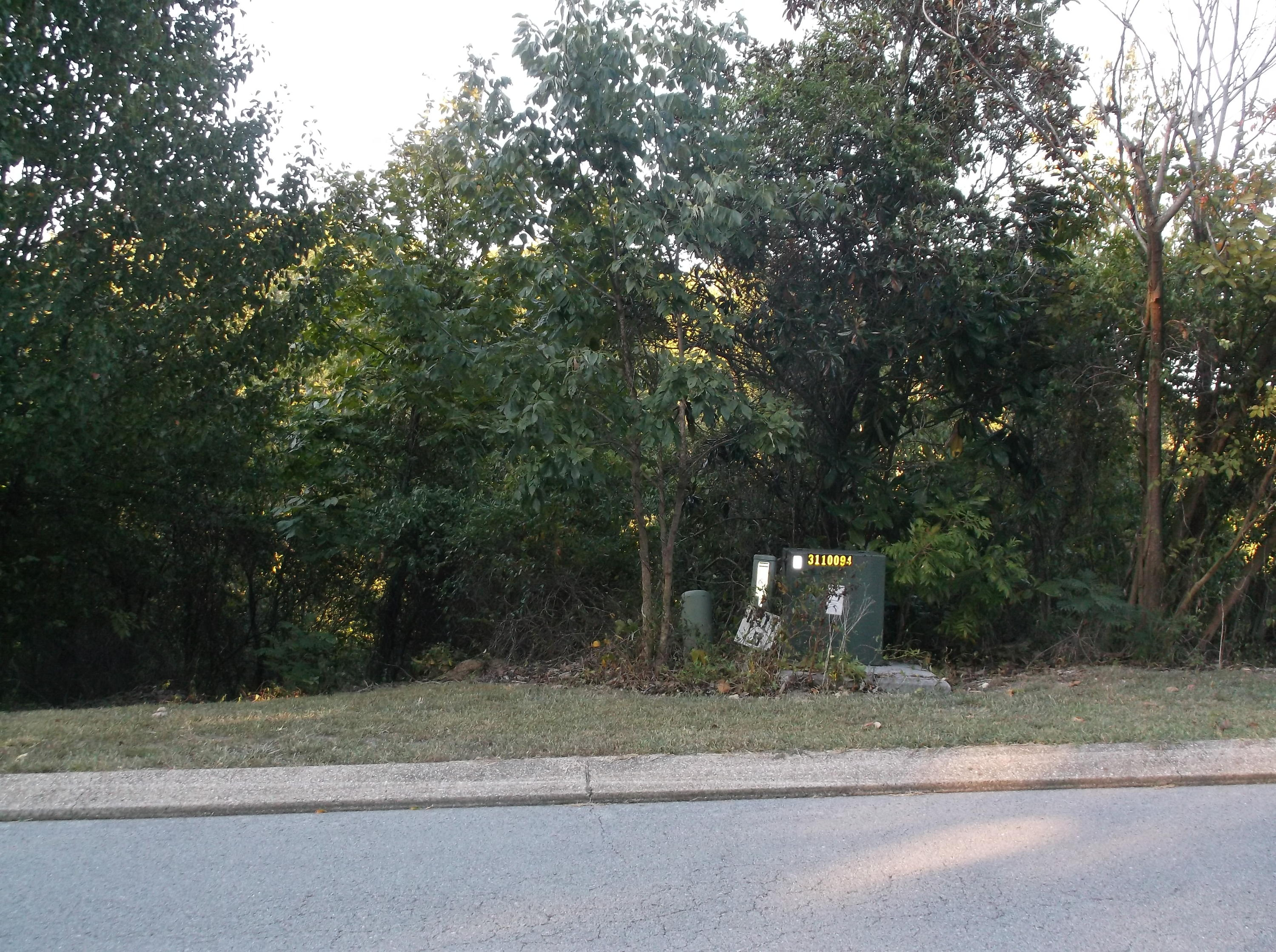 Photo of home for sale at 0 Magnolia Place/005, Ringgold GA