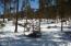 Winter sunny lot