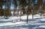 Winter sunny lot2