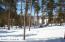 Winter sunny lot3