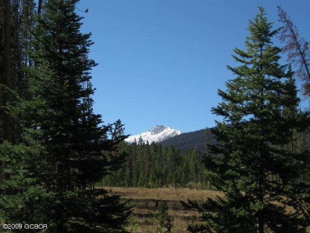 MLS# 17-512 - 1 - 255  Moose Run Aka Gcr 5002, Fraser, CO 80442