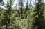 Nice trees