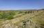 Sagebrush and more views