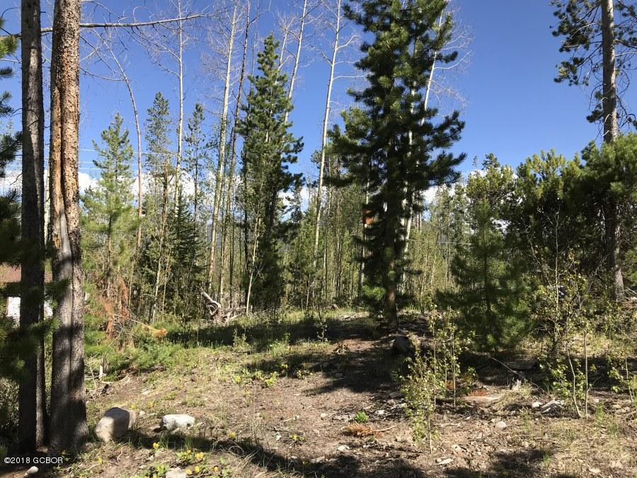 MLS# 18-693 - 1 - 92  Mad Moose Lane, Grand Lake, CO 80447