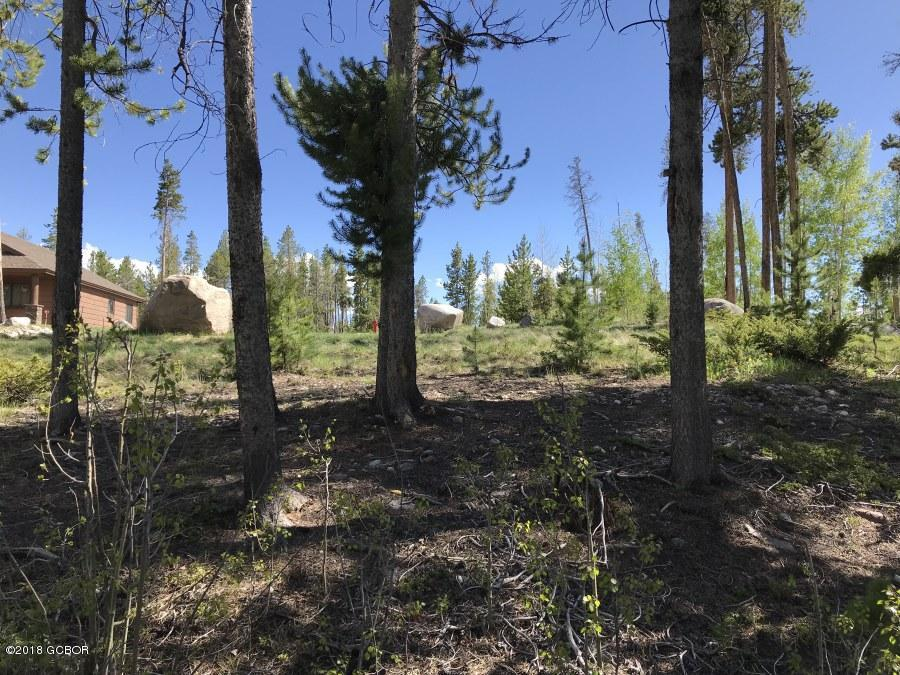 MLS# 18-695 - 1 - 134  Mad Moose Lane, Grand Lake, CO 80447