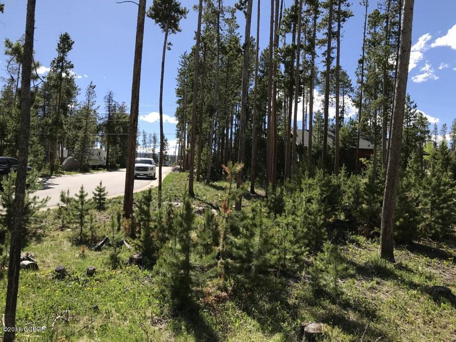 MLS# 18-696 - 1 - 23  Mad Moose Lane, Grand Lake, CO 80447