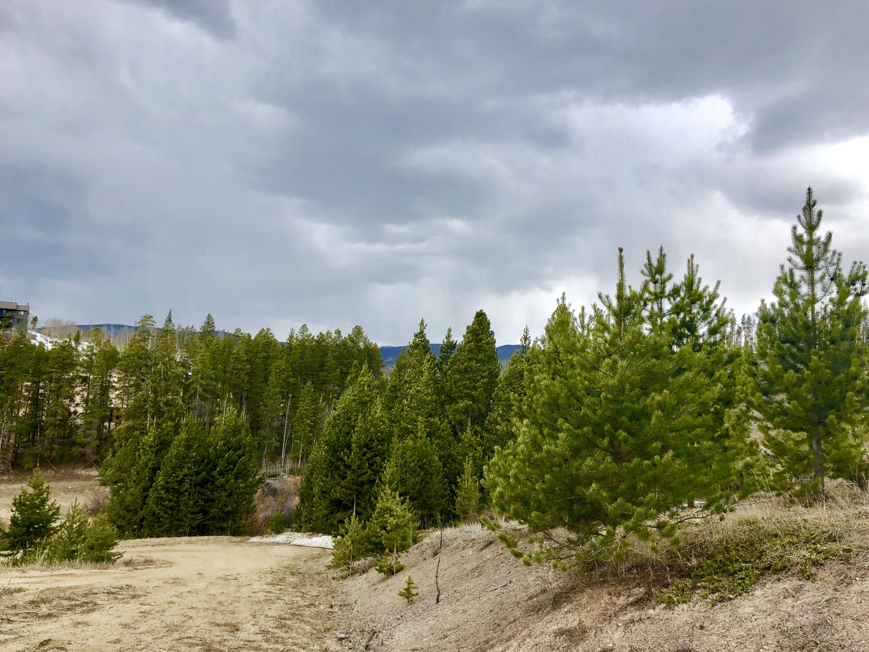 MLS# 19-511 - 9 - TBD Pondview Lane  #, Grand Lake, CO 80447