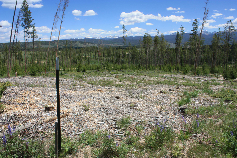 MLS# 19-1063 - 1004  W Elk Meadows Drive Gcr 5194w, Tabernash, CO 80478