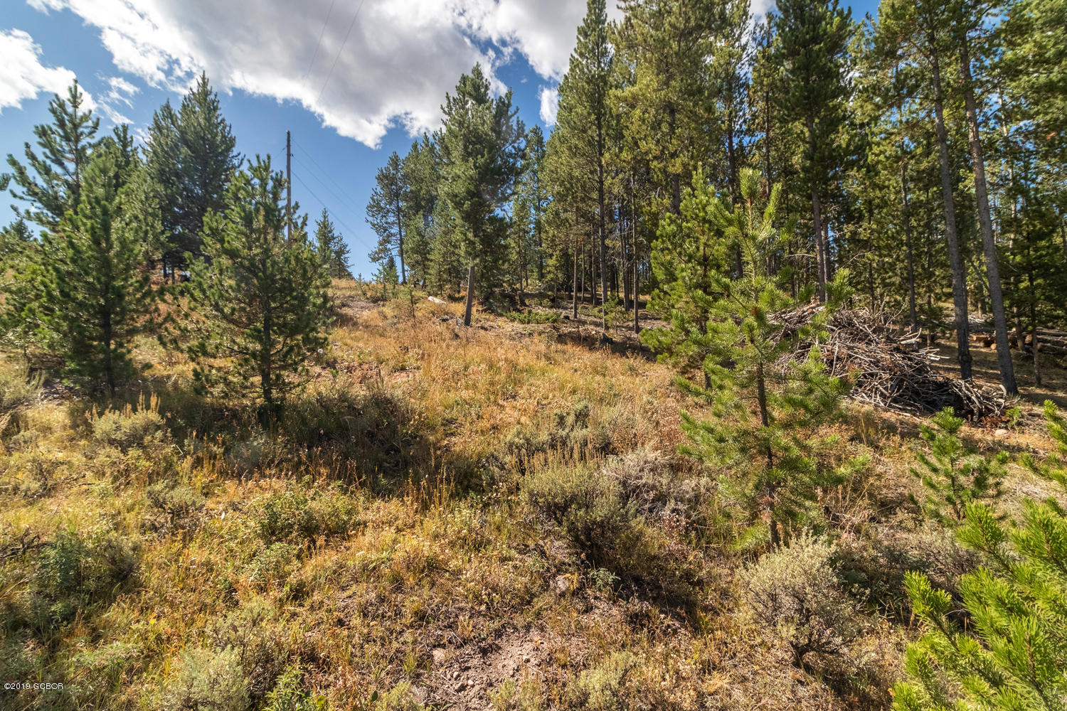 MLS# 19-1462 - 9 - 261 Gcr 524  #, Tabernash, CO 80478