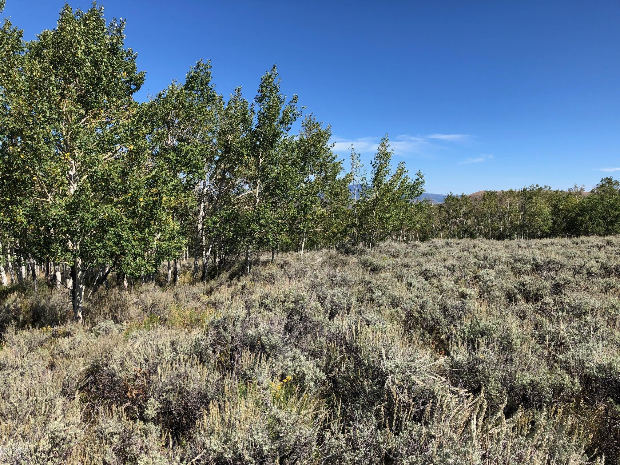 MLS# 19-1484 - 2585 County Rd 372  #, Parshall, CO 80468