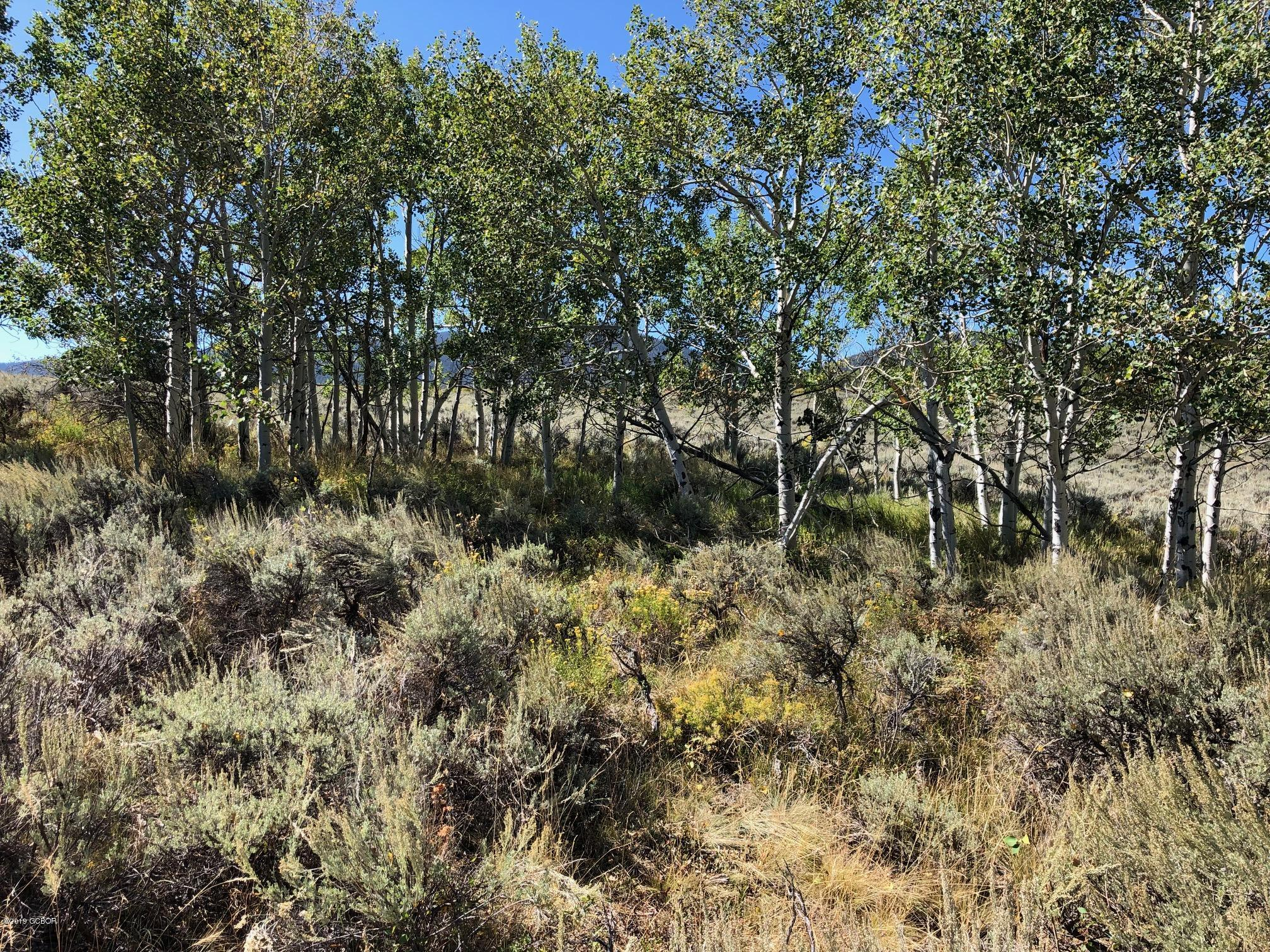 MLS# 19-1484 - 10 - 2585 County Rd 372  #, Parshall, CO 80468