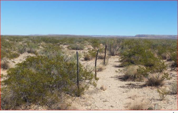 0000 0000 Hudspeth County, Texas, Texas, ,Land,For sale,0000 Hudspeth County, Texas,756720