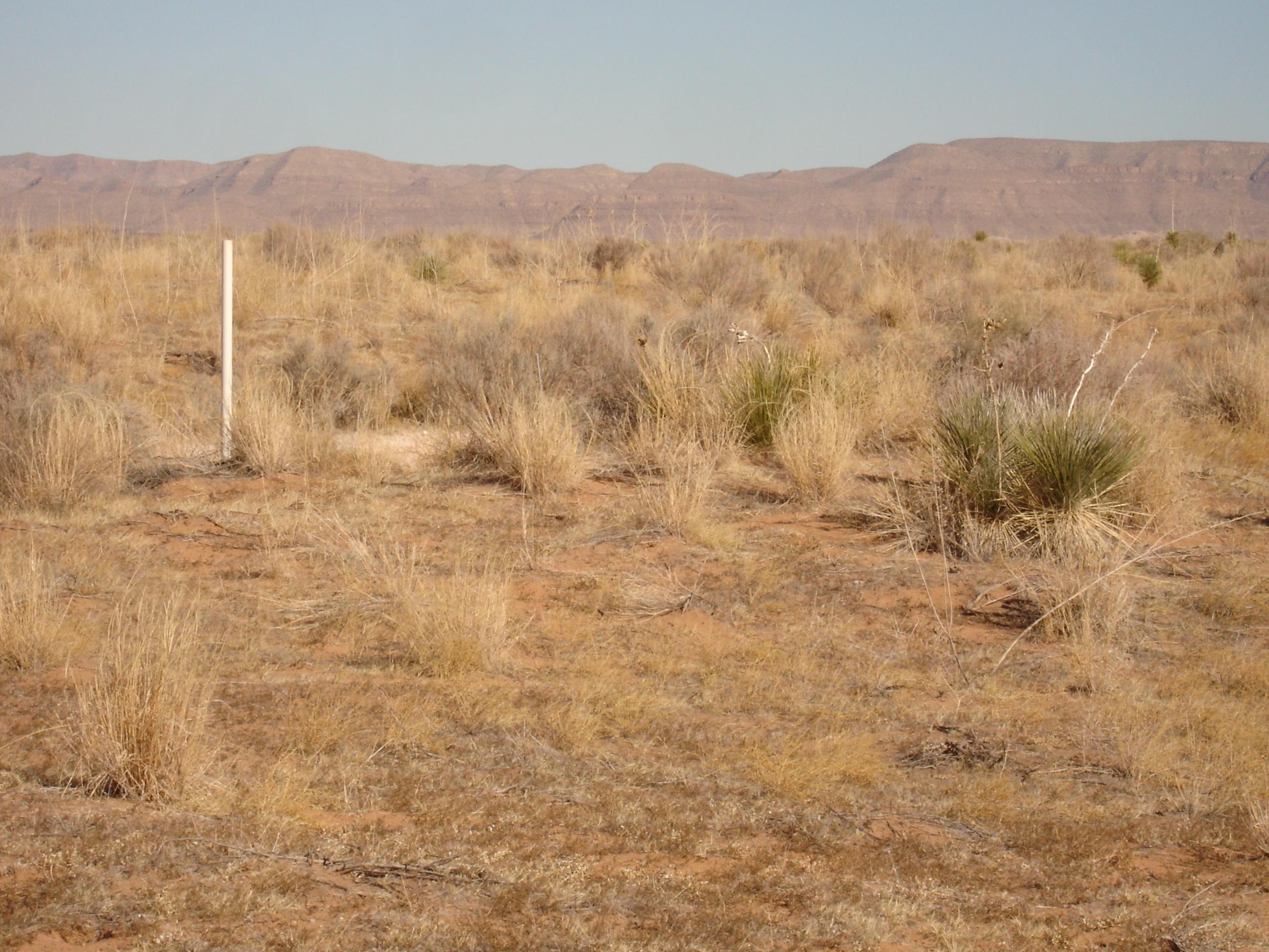 0 State Highway 1111, Sierra Blanca, Texas 79851, ,Land,For sale,State Highway 1111,807284