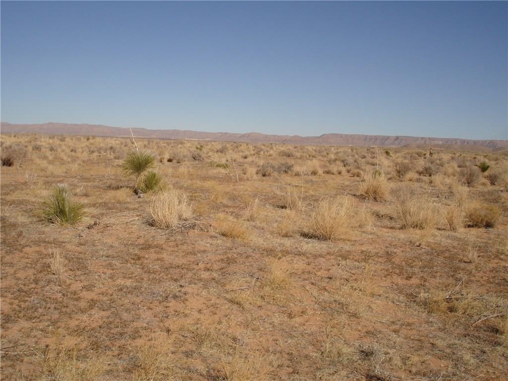1 Sec 2 Tex Mex, Sierra Blanca, Texas 79851, ,Land,For sale,Sec 2 Tex Mex,819729