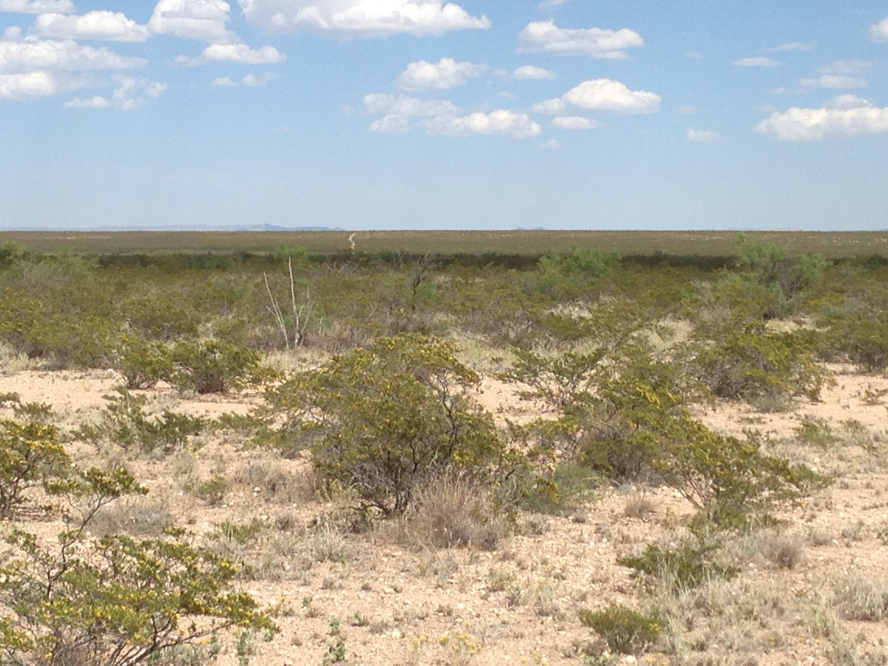 51 SEC 17 SUNSET RANCHES #, Sierra Blanca, Texas 79851, ,Land,For sale,SUNSET RANCHES #,821121