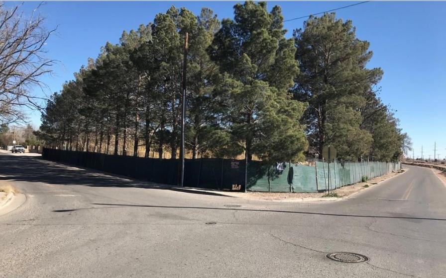 8401 Roseway Drive, El Paso, Texas 79907, ,Land,For sale,Roseway,831085