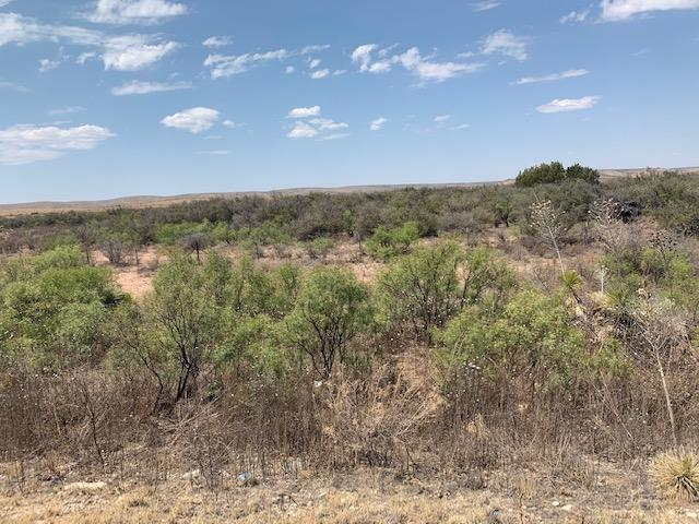 000 Sierra Prieto, Sierra Blanca, Texas 79851, ,Land,For sale,Sierra Prieto,834235