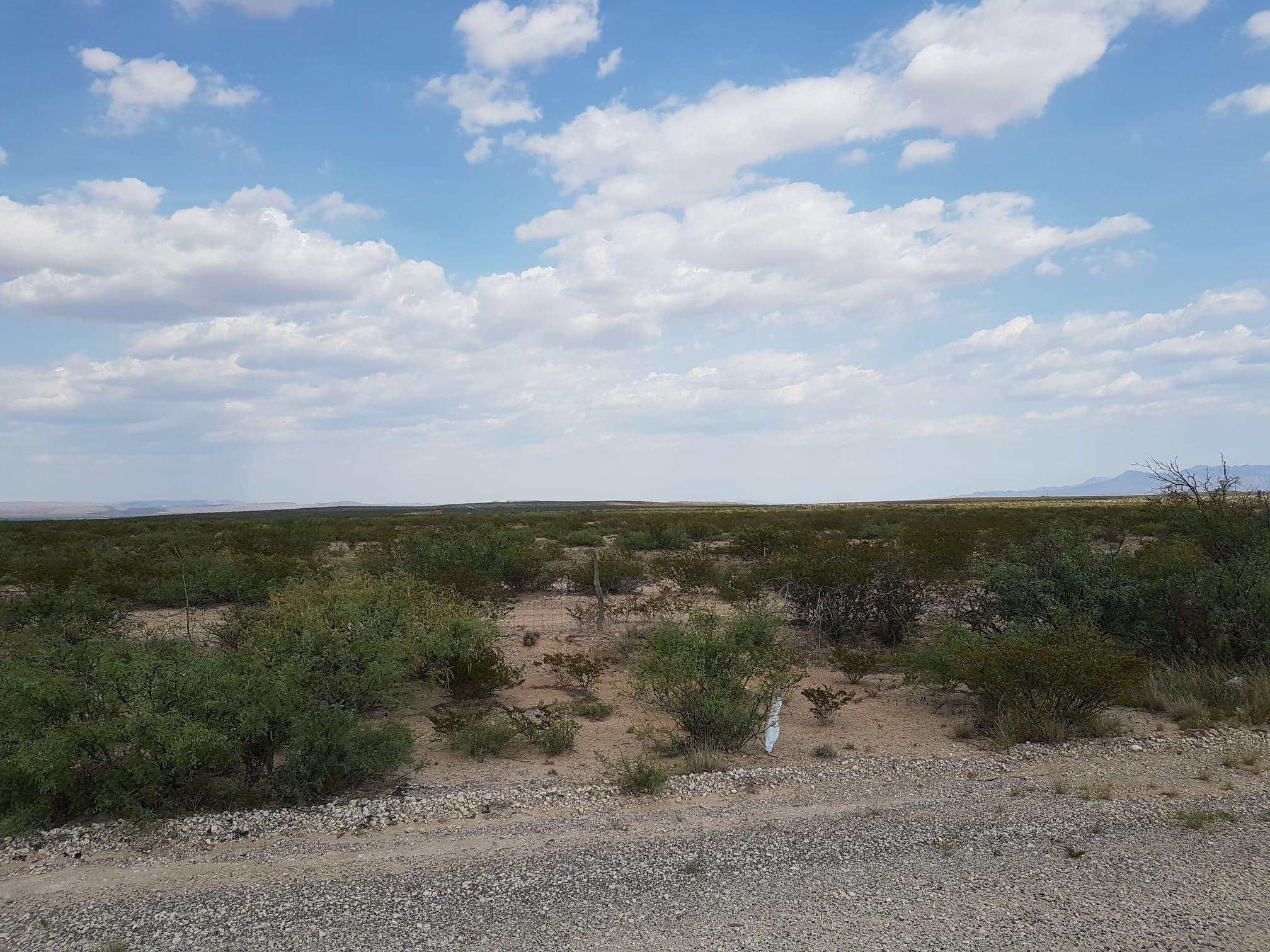 29 Undivided Acres, Sierra Blanca, Texas 79851, ,Land,For sale,Undivided Acres,834345