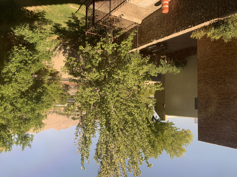4171 Mesa Street, El Paso, Texas 79902, ,Commercial,For sale,Mesa,835229