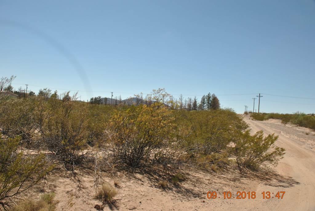 0 Alta Vista Drive, Chaparral, New Mexico 88081, ,Land,For sale,Alta Vista,835279