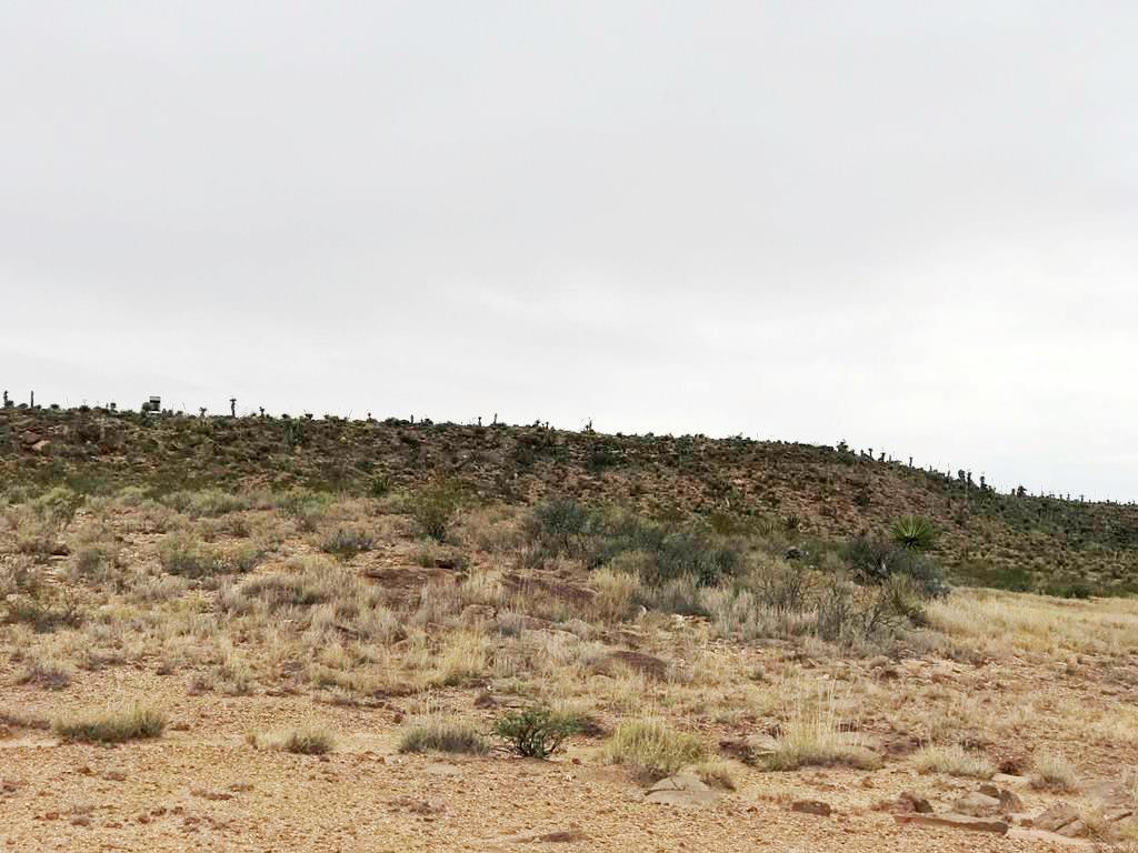 TBD 51 Sec 6/7 Psl #442 Lot 28, Unincorporated, Texas 99999, ,Land,For sale,51 Sec 6/7 Psl #442 Lot 28,835643