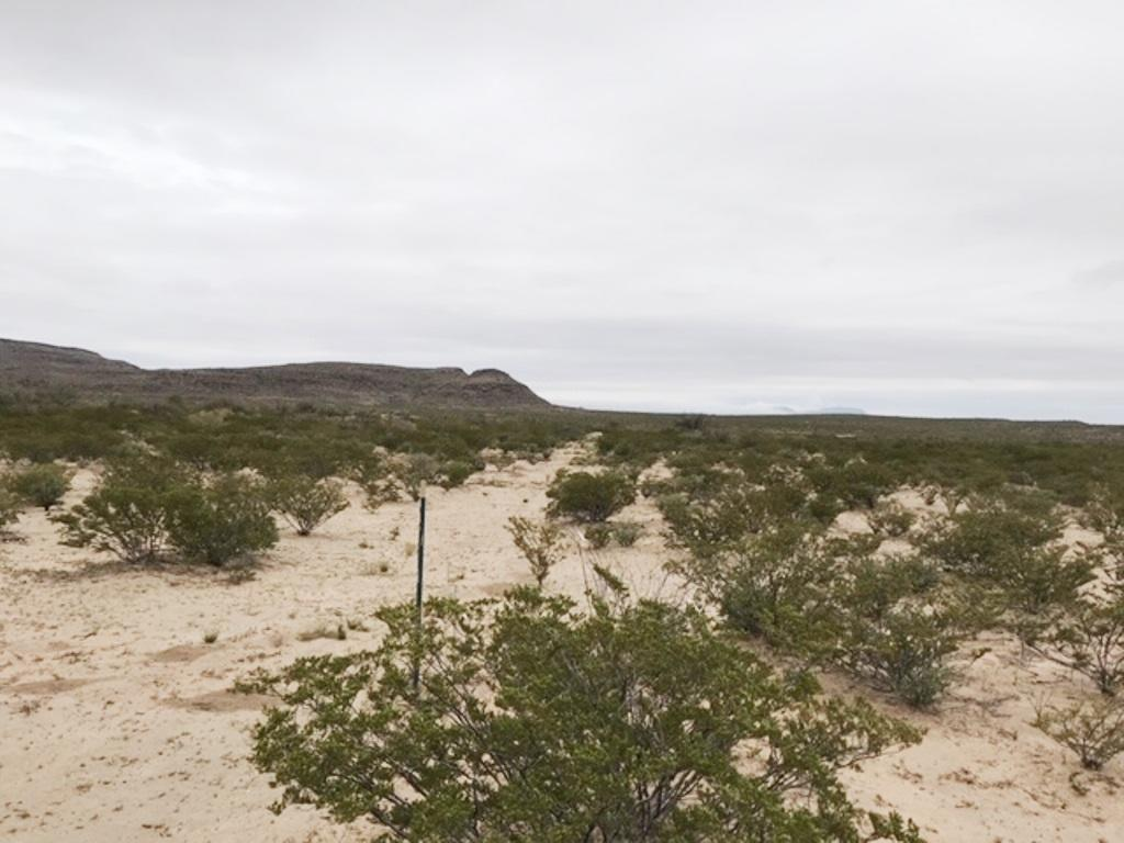 TBD 51 Sec 8 Psl #449 Lot 13, Unincorporated, Texas 99999, ,Land,For sale,51 Sec 8 Psl #449 Lot 13,835645