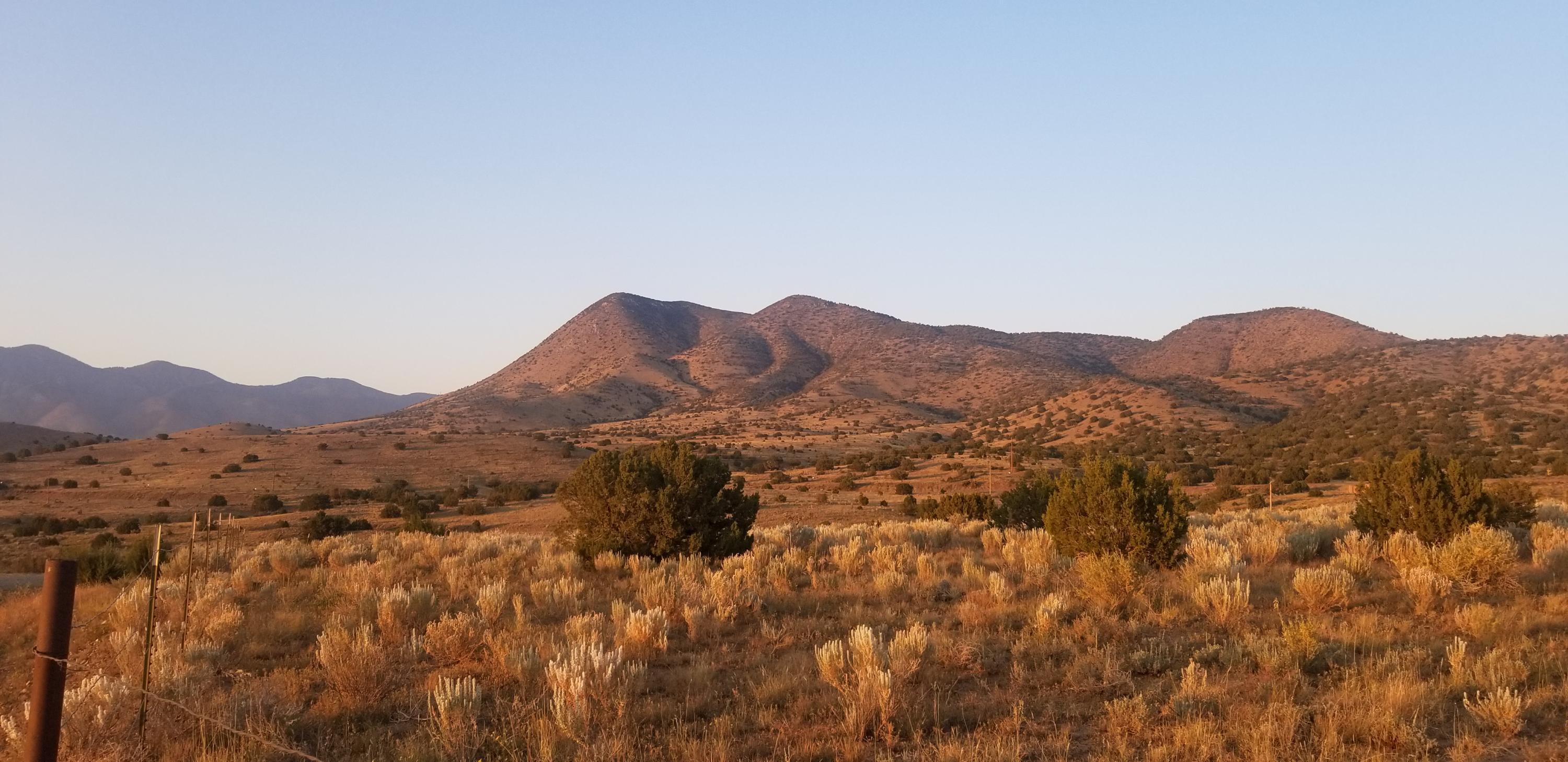 000 Longhorn Loop, Unincorporated, New Mexico 99999, ,Land,For sale,Longhorn,836037