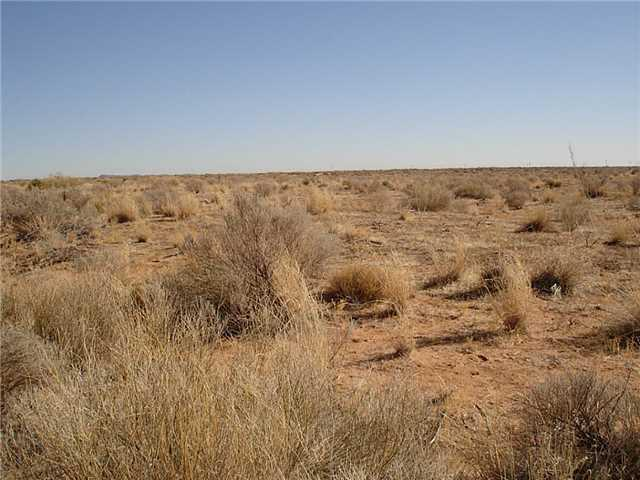 6963 AB BLK 65 Road, Van Horn, Texas 79855, ,Land,For sale,AB BLK 65,824350