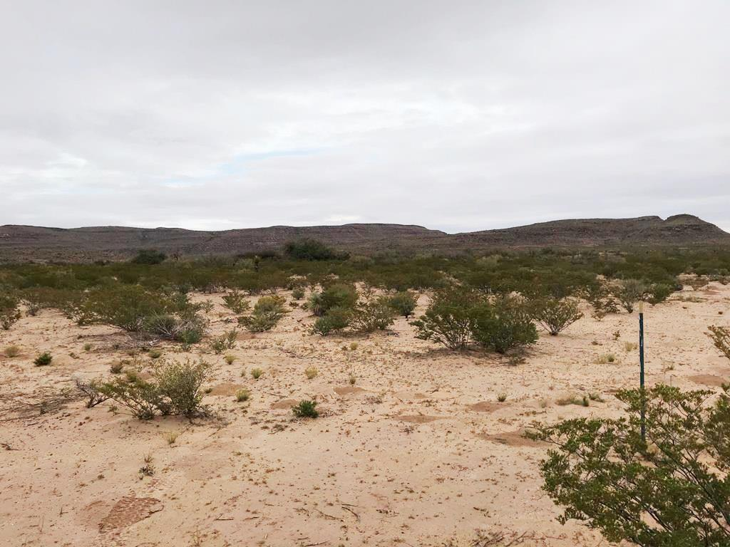 77 AB BLK 66 Road, Van Horn, Texas 79855, ,Land,For sale,AB BLK 66,824363