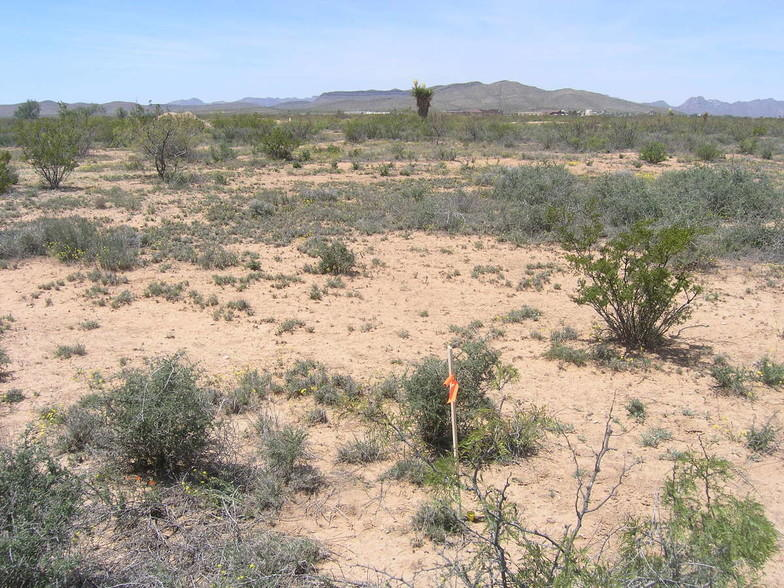 10 Rancho Verde #9B, Sierra Blanca, Texas 79851, ,Land,For sale,Rancho Verde #9B,838861