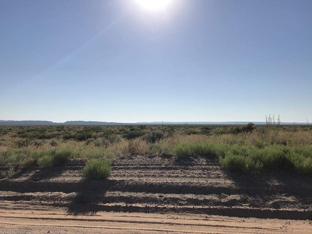 TBD INDIAN Trail, Clint, Texas 79836, ,Land,For sale,INDIAN,839134